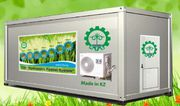 Гидропонное оборудование для выращивания зеленого корма